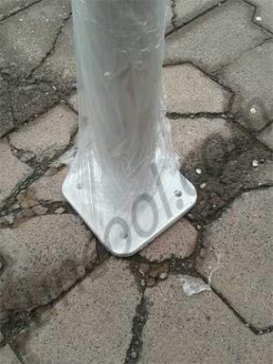 kamelya-ayağı